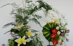 秦汉胡同教育上海秦汉胡同为学员们传授插花的技巧